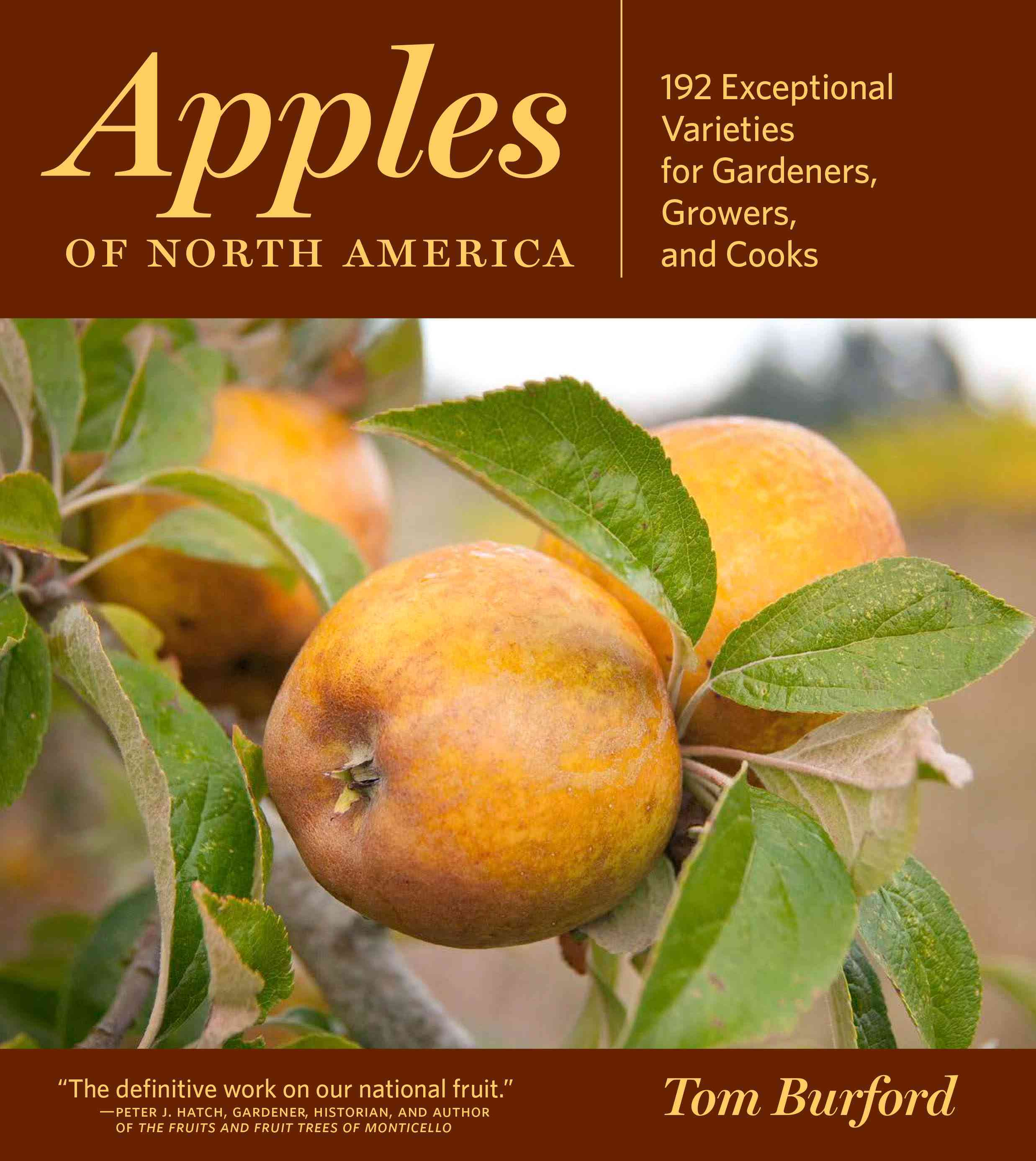 Apples of North America By Burford, Tom